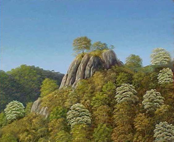 cliffs_bocotes