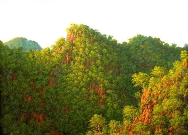 cliffs_nayarit110x8-92