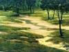 fields_arroyito7x51980
