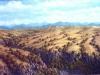 fields_barranca_del_edo_mex