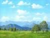 fields_el_bajio