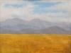 fields_llano