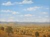 fields_otono_en_morelos