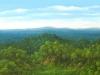 fields_palenque