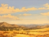 fields_tarde_luminosa