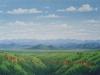 fields_valle_de_morelos