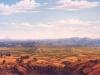 fields_valle_de_morelos_2