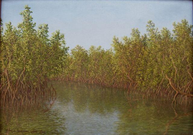 rivers_manglar