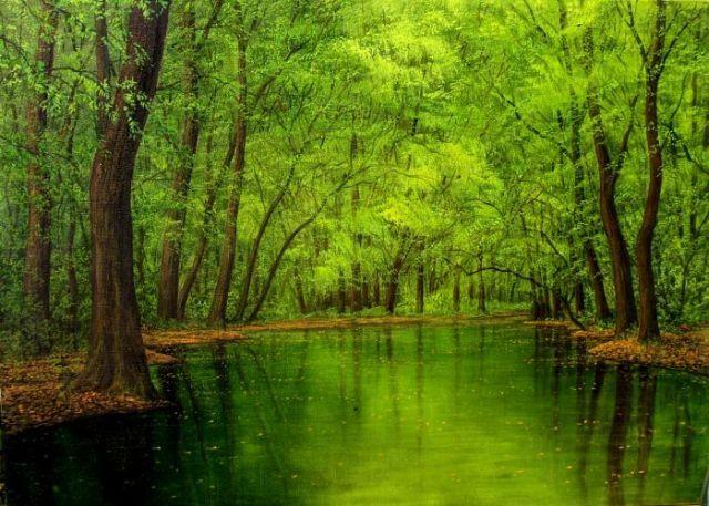 rivers_rio_verdoso