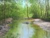 rivers_arroyo100x801992