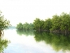 rivers_laguna_potosi7x5-04