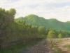 rivers_rio_pedregoso