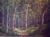 trees_bosque_denso
