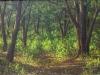 trees_el_encino