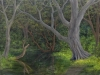 trees_las_estacas