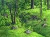 trees_zempoala2