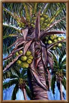 coconut_palm_1998_34x28